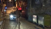 ÇEVİK KUVVET - İstanbul'da Uyuşturucu Operasyonu