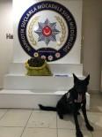POLİS EKİPLERİ - Kahramanmaraş'ta Uyuşturucu Operasyonu