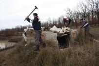 JANDARMA KOMUTANLIĞI - Kırklareli'nde 6 Güme İmha Edildi