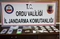 ALTINORDU - Ordu'da Jandarmadan Uyuşturucu Operasyonu