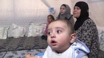 SIĞINMACI - Sığınmacıların 'Terörsüz Suriye' Hayali