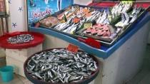 ÇANAKKALE BOĞAZı - Sofralar Da Tezgahlar Da 'Denizlerin Prensi'ne Hasret