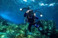 ULUSLARARASI - Su Altı Fotoğrafçıları Kurumsal Bir Temsilciye Kavuştu