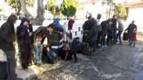 AFGANISTAN - Çanakkale'de 43 Kaçak Göçmen Yakalandı