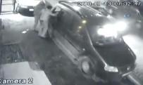 BAHÇELİEVLER - Hırsızlar Yanlarından Geçen Araçlara Aldırış Bile Etmedi