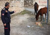 Jiletli Tellere Sıkışan At Ve Tayı İtfaiye Kurtardı
