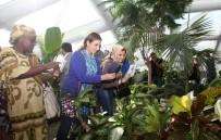 KELEBEKLER VADİSİ - Konya'nın Favori Ziyaret Mekanı Tropikal Kelebek Bahçesi