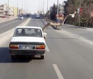 Otomobilin Camından Uzatılan 2 Metrelik Ağaç Şaşkına Çevirdi