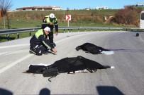 Cezaevi Nakil Aracı İle Motosiklet Çarpıştı Açıklaması 2 Ölü