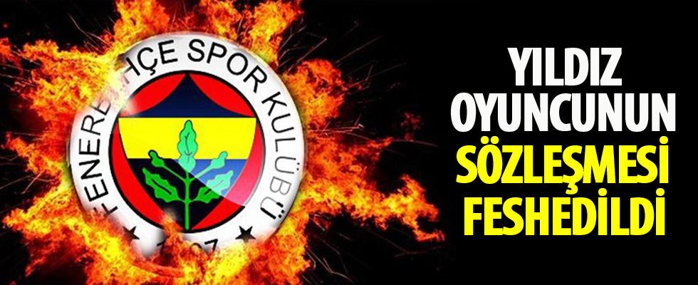 Fenerbahçe Van Persie'nin sözleşmesini feshetti