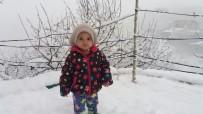 Hakkari'de 14  Köy İle 42 Mezra Yolu Ulaşıma Kapandı