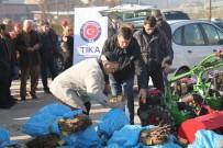 AVRUPA ÜLKELERİ - Sırbistan'da Ahududu Üretiminin Geliştirilmesine TİKA Desteği