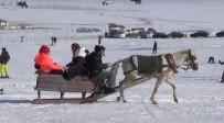 Sarıkamış'ta Atlı Kızakla Kayak Keyfi
