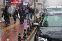 BAHAR HAVASI - Van'da Kar Yağışı