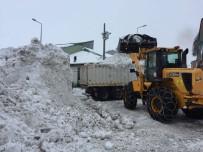 KAR TOPU - Bingöl'de Kar Nedeniyle 87 Köy Yoluna Ulaşım Sağlanamıyor