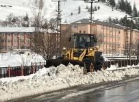 BİTLİS - Bitlis 45 Köy Yolu Ulaşıma Kapalı