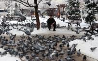ÇAY OCAĞI - Van'da Kar Yağışı