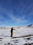 Aç Kalan Kuşlar İçin 85 Kilometre Giderek Aralıklarla Yem Bıraktı
