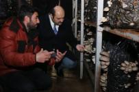 Kültür Mantarı Üreticilerine Başkan Orhan'dan Destek