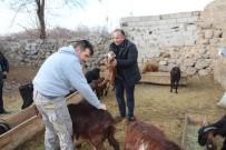 Müdür Yolcu, Çiftçileri Ziyaret Etti
