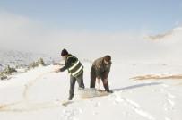 Şırnak'ta Hayvanlar İçin Yem Bırakıldı