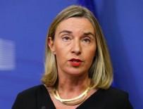 AB, Afrin operasyonuna karşı