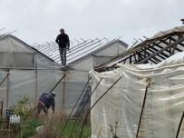 ŞİDDETLİ RÜZGAR - Alanya'da Oluşan Hortum Seralara Zarar Verdi