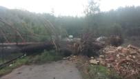 ŞİDDETLİ FIRTINA - Antalya Şiddetli Fırtınaya Teslim Oldu