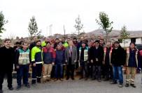 YıLDıZTEPE - Başkan Çakır, İşçilerle Birlikte Ağaç Dikti