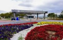 UÇAK TRAFİĞİ - Çanakkale Havayolunda Yüzde 70 Artış Oldu