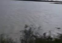 MEHMET AKıN - Adana'da Tarım Alanlarını Su Bastı