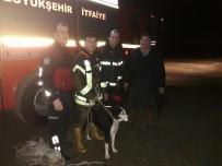 AV KÖPEĞİ - İtfaiyeden Gece Yarısı Köpek Kurtarma Operasyonu