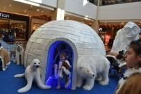 GIZEMLI - Şanlıurfalı Minikler Sömestr Tatilinde Eskimo Köyü İle Eğleniyor