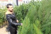MEHMET GÜNEŞ - Silopi'de Fidan Satışlarına Yoğun İlgi