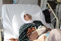 DEMOKRASİ NÖBETİ - Demokrasi Nöbetine Eşeği İle Katılan Emine Nine Hastanede Tedavi Altında