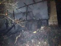 BELEVI - Evi Yanan Yaşlı Adamı Komşuları Kurtardı