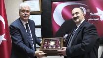 KREŞ DESTEĞİ - İŞKUR Genel Müdür Vekili Uzunkaya Açıklaması