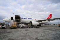 OKYANUS - Turkish Cargo Çin'e Penguen Ve Aslan Taşıdı