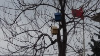 Batman'da Ağaçlara Kuş Yuvaları Konuldu