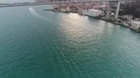 İSTANBUL BOĞAZI - (Özel)Turkuaz Rengine Bürünen İstanbul Boğazı Hayran Bıraktı