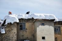 Tunceli'de Kar 116 Köy Yolunu Kapattı