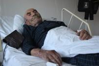 Yanan Evini Kedisine Sarılarak İzleyen Ali Dede Hastaneye Kaldırıldı