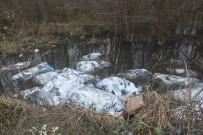 Yol Kenarına Dökülen Tekstil Çöpüne İnceleme