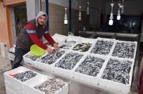 BALIK FİYATLARI - Ordulu Balıkçılar Hamsinin Peşine Gürcistan'a Gitti
