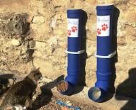 HAYVAN SEVERLER - Sokak Hayvanları İçin Beslenme Odakları Yerleştirildi