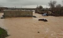AŞIRI YAĞIŞ - Viranşehir'de Aşırı Yağış Sele Neden Oldu