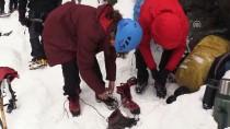MEDİKAL KURTARMA - '4. Uluslararası Emrah Özbay Buz Tırmanış Festivali'