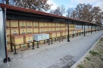 PROPOLIS - Büyükşehir Belediyesi Bir İlke Daha İmza Attı