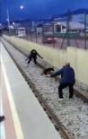 ŞIRINEVLER - Metroda Köpek Kurtarma Operasyonu