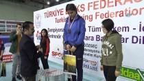 İBRAHIM PAŞA - Türkiye Kadınlar Boks Şampiyonası